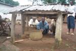 Togomando (Shrine from the Kissi ethnic group)