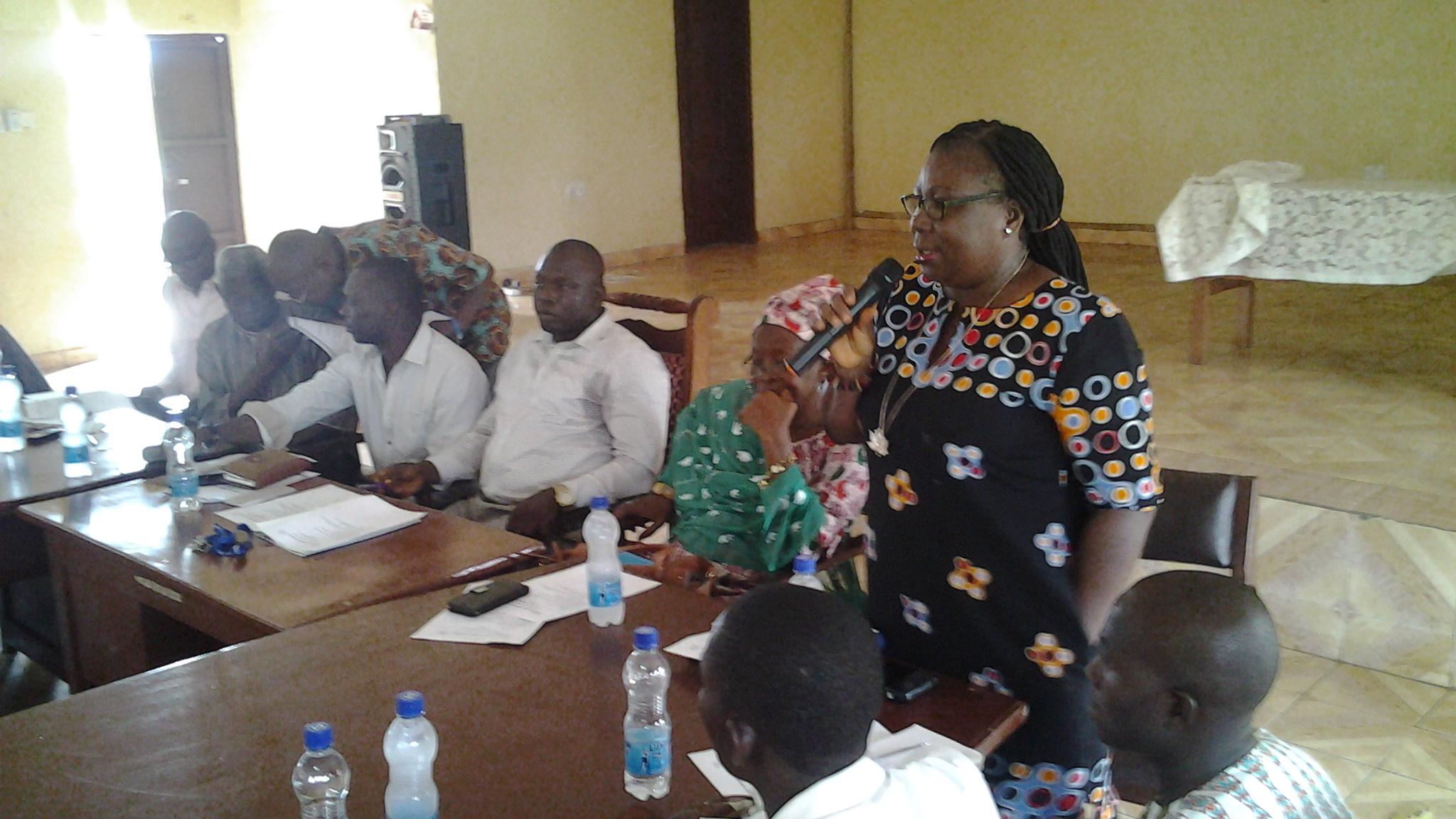 Vice Chair 2,IDC Sara Jalloh gives stewardship